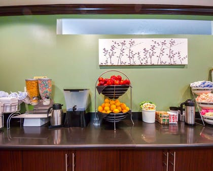 Breakfast counter | Sleep Inn & Suites Edmond near University