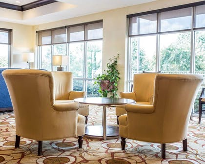 Lobby with sitting area   Comfort Suites Rock Hill