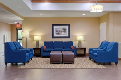 Lobby with sitting area | Comfort Suites Johnson City