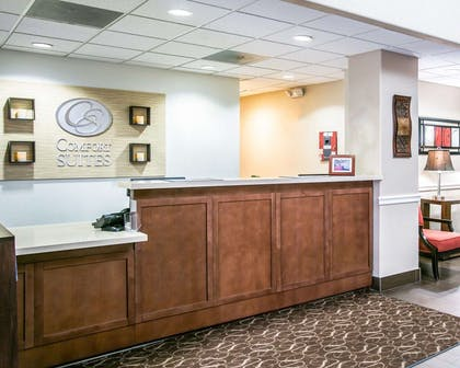 Front desk | Comfort Suites Willowbrook