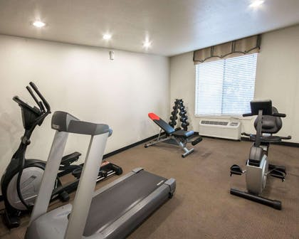 Fitness center with cardio equipment and weights   Comfort Inn Mansfield