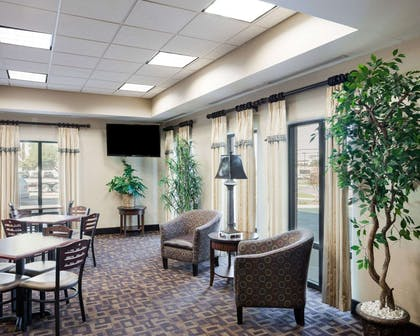 Sitting area | Comfort Inn And Suites Airport