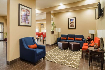Lobby with sitting area | Quality Suites North IH 35
