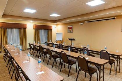 Banquetmeeting room with audiovisual equipment   Comfort Suites Hobby Airport