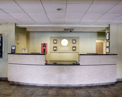 Front desk | Comfort Inn & Suites Selma near Randolph AFB