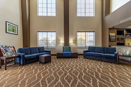 Lobby with sitting area | Comfort Suites Buda - Austin South