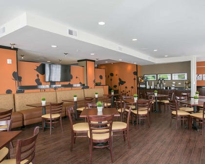 Breakfast area | Sleep Inn & Suites Austin Northeast