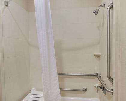 Handicapped accessible shower | Comfort Inn