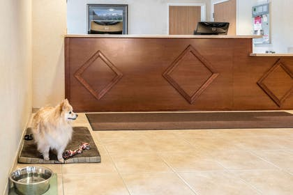 Front desk with friendly staff | Quality Inn & Suites at Olympic National Park