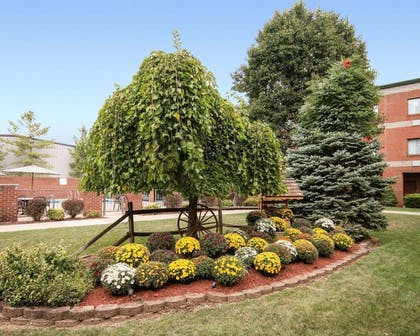Hotel with beautiful views | Comfort Suites Parkersburg South