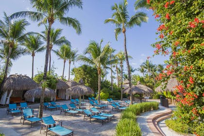 Pool view | The Palms Hotel & Spa
