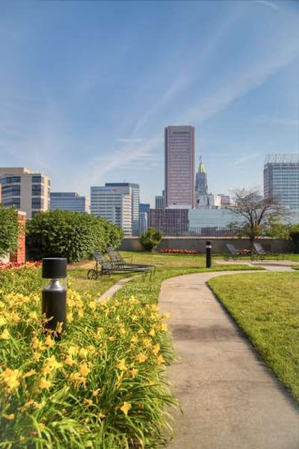 Rooftop | Royal Sonesta Harbor Court Baltimore