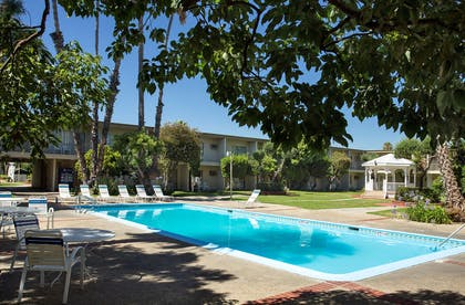 Courtyard and Pool | Golden Sails Hotel