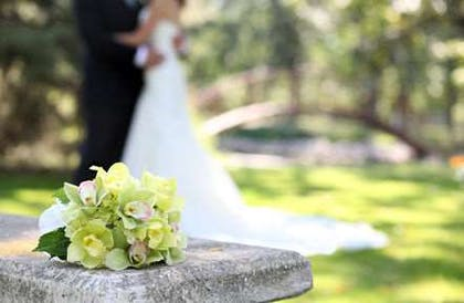 Wedding | Country Inn & Suites by Radisson, Indianapolis Airport South, IN