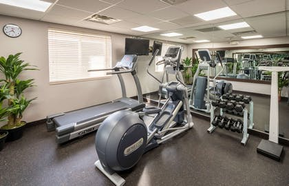 Fitness Center | Country Inn & Suites by Radisson, Rochester-Pittsford/Brighton, NY