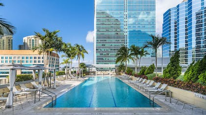 Pool | Conrad Miami