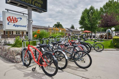 Bicycles for Rent | Best Western Pioneer