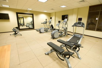 Health club | Hilton Garden Inn Omaha East/Council Bluffs