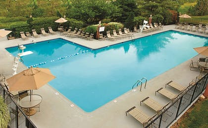 Pool | DoubleTree by Hilton Hotel Annapolis