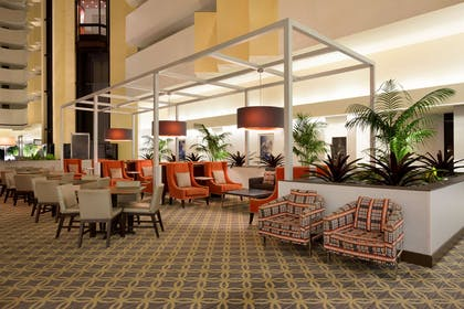 Lobby | Embassy Suites by Hilton Boca Raton