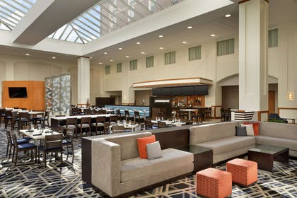 Lobby | Embassy Suites by Hilton Boston At Logan Airport