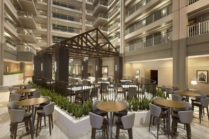 Lobby | Embassy Suites by Hilton Chicago Lombard Oak Brook