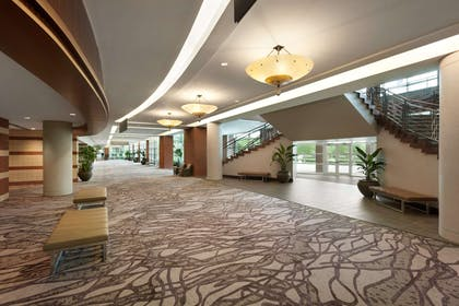 Meeting Room | Embassy Suites by Hilton Charleston Airport Hotel & Convention Center
