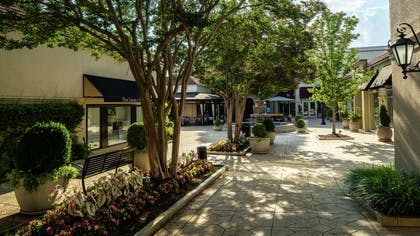 Recreational Facility | DoubleTree Suites by Hilton Hotel Charlotte - SouthPark