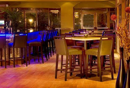 BarLounge   Embassy Suites by Hilton Fort Lauderdale 17th Street