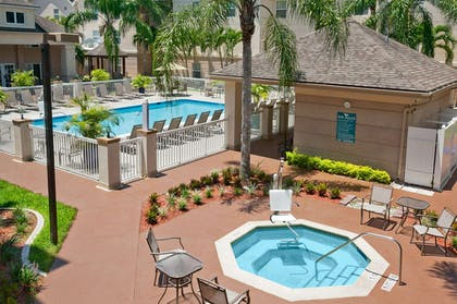 Pool | Homewood Suites by Hilton Fort Myers