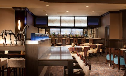 BarLounge   Embassy Suites by Hilton Houston Near the Galleria