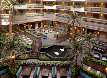 Lobby   Embassy Suites by Hilton Houston Near the Galleria
