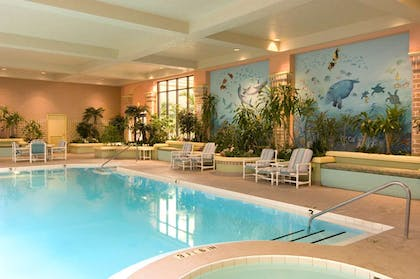 Pool | Embassy Suites by Hilton Jacksonville Baymeadows