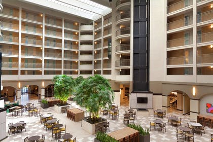 Lobby | Embassy Suites by Hilton Jacksonville Baymeadows