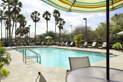 Pool   Embassy Suites by Hilton Orlando Airport