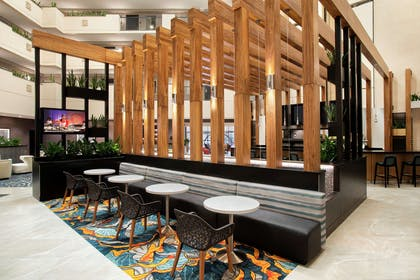 BarLounge   Embassy Suites by Hilton Orlando Airport