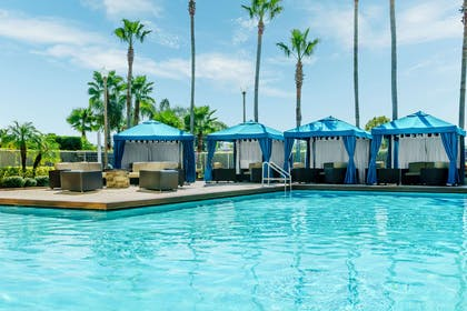 Pool | DoubleTree by Hilton Orlando Airport