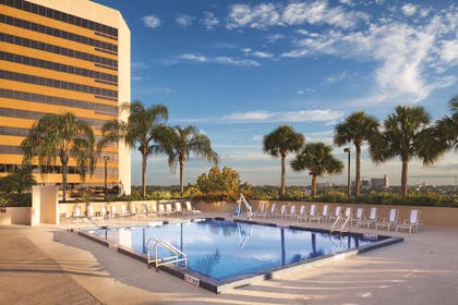 Pool | DoubleTree by Hilton Orlando Downtown