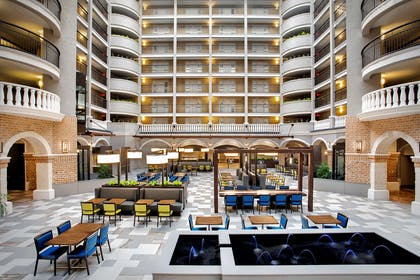 Lobby   Embassy Suites by Hilton Orlando International Drive Convention Center