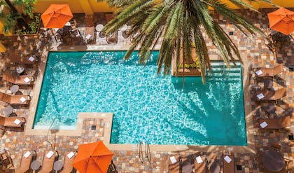 Pool   Embassy Suites by Hilton Orlando International Drive Convention Center