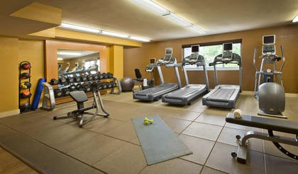Health club | DoubleTree Suites by Hilton Minneapolis Downtown