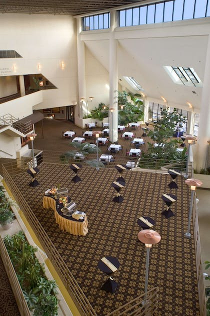 Lobby | DoubleTree by Hilton Hotel Minneapolis - Park Place