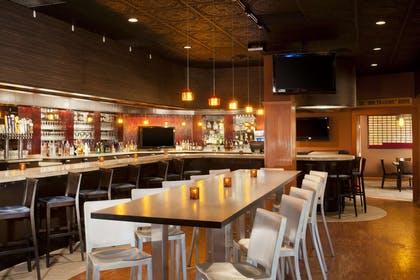 BarLounge | DoubleTree by Hilton Hotel Minneapolis - Park Place