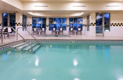 Pool | Hilton Garden Inn Minneapolis St. Paul-Shoreview
