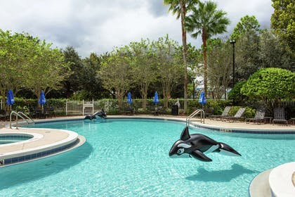 Pool | Hilton Garden Inn Orlando at SeaWorld