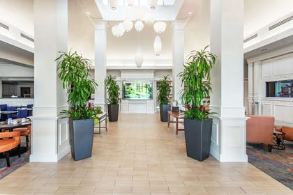 Lobby | Hilton Garden Inn Orlando at SeaWorld