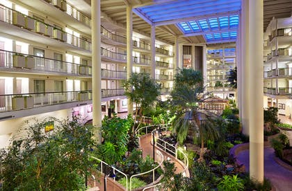 Lobby   Embassy Suites by Hilton Parsippany