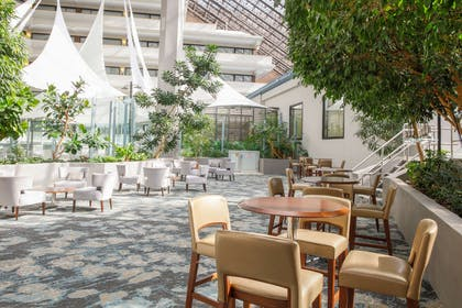 Lobby   DoubleTree by Hilton Hotel Rochester