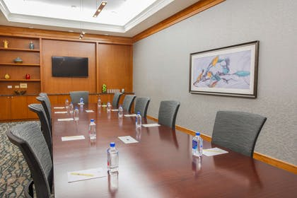 Meeting Room   DoubleTree by Hilton Hotel Rochester