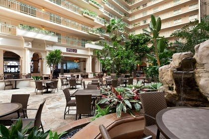 Lobby | Embassy Suites by Hilton San Francisco Airport Waterfront